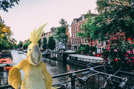 Pablo de Burddy aux Pays-Bas sur un joli pont, accoudé à une bicyclette